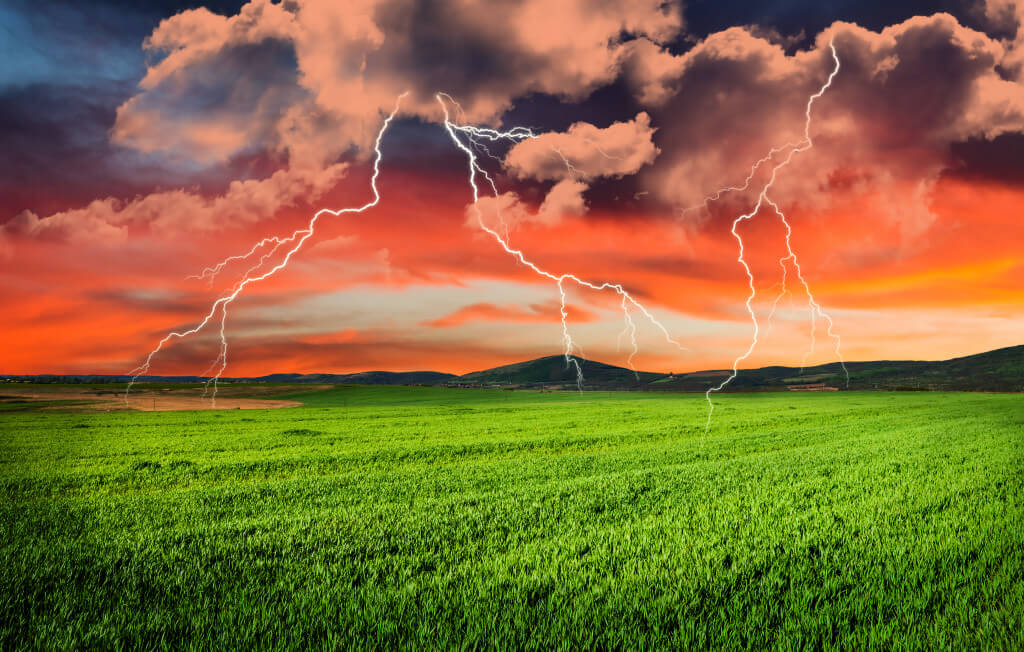 Tame the storm product recalls unleash with the right inventory management software