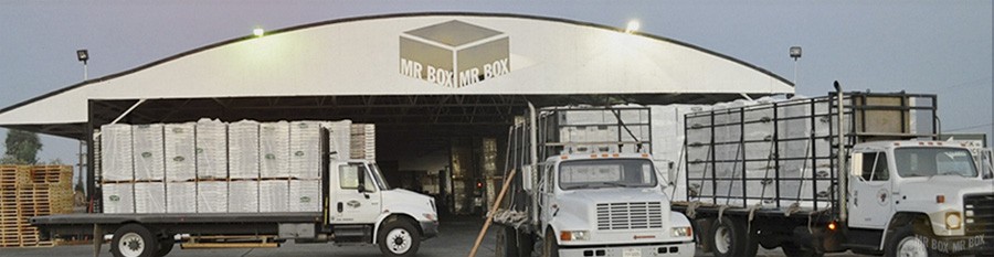MR BOX, one-stop-shop for fresh produce packaging