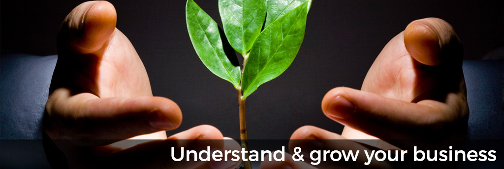 Understand and grow your business