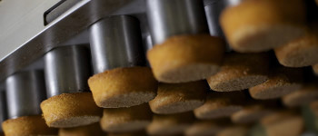 The Brand Passport cookie and snack manufacturing