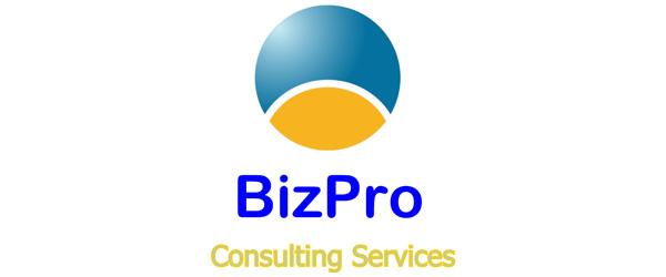 BizPro Consulting Services